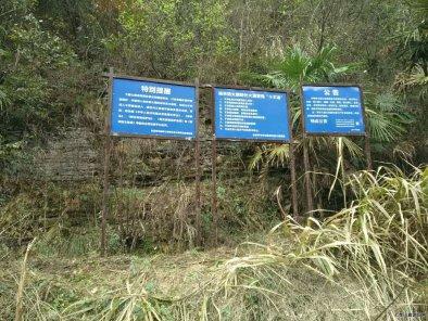 七星山度假区全面加强森林资源保护工作